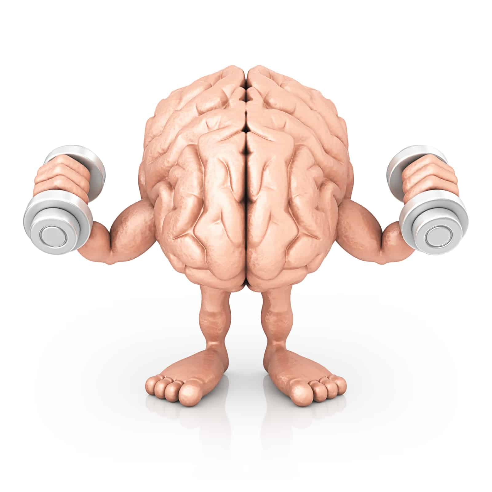 image of a human brain lifting weights